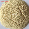 Top Quality Ginger Extract Powder