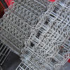 Galvanized Fence Cattle Field Fence for Animal Fence