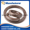 NBR FKM Viton Framework Oil Seal for Bearing