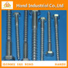 Stainless Steel 304/316 M16X60 DIN571 Coach Screw