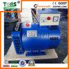 Best Price ST Alternator 220V 5kw