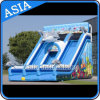 Giant Dual Lane Inflatable Shark Water Slide for Water Park