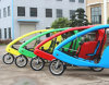 1000W Electric Sightseeing Tricycle / Electric Trick for Park Touring