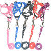 Pet Collar Leash Products Supply Accessories Dog Collar