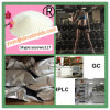 Safe and Effective Steroid Powder 17-Methyl-Testosterone CAS 58-18-4
