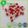 Anti Aging Herbal Capsule Resveratrol Bulk Powder