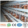 Poultry Cage with Automatic Feeding and Drinking System