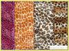 Printing Short Velour/Soft Fleece (KTG-SW3005)