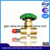 DJ-10CC Brass Cryogenic Stop Valve for Dewar Tank (Green handwheel)