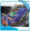 Purple Inflatable Amusement Castle Park for Kids