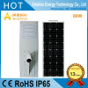 80W Outdoor Lighting Solar LED Street Garden Light