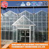 Agriculture Venlo Vegetable/Flower Tempered Glass Greenhouse