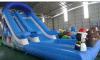 New Design Popular Style Inflatable Slide