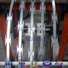 Hot Dipped Galvanized Concertina Razor Wire