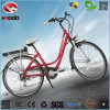 Whalesale Alloy Frame 250W Electric City Road Bike