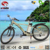 Alloy Frame Rear Motor MTB E-Bike Front Suspension Mountain Scooter