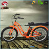 500W Fat Tire Electric Beach Bike for Adult