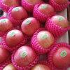 Yantai Origin Fresh Red Paper FUJI Apple