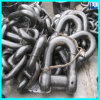 Alloy/Stainless Steel Small D Shaped Shackle for Anchor Chain