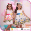 Elegant Two Color Party Wear, Embroidery Party Girl Dress