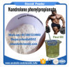 Anabolic Steroids Npp /Durabolin /Nandrolone Phenylpropionate Powder for Muscles Growth