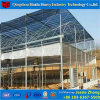 China Factory Supply Plastic Garden Greenhouse for Fruit Tree Growth