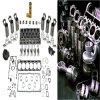 Quality and Hot Sale Toyota/Komatus Parts