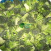 Frozen IQF Broccoli Florets