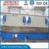 2-We67k Steel Plate Hydraulic Tandem press brake