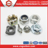 High Quality Stainless Steel Square Weld Nut DIN928