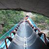 Heavy Duty Steel Cord Conveyor Belt /Tear Resistant Conveyor Belt