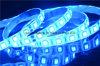 DC 12V Voltage Safe and Blue Flexible LED Strip Lighting