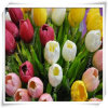 New Tulip Simulation Flowers for Promotion