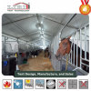 15-60m Large Aluminum Tent for Horse Show/ Horse Stall/ Horse Riding