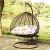 Double Seat Swing Wicker Egg Chair Living Room Swing Chair Luxury Outdoor Furniture (D151A)