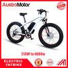 Electric Fat Bike 48V 500W 1000W Fatbike