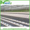 Farm Hydroponics Greenhouse System