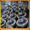 Gear of Gearbox