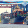 Freight Shipping LCL to New Delhi by Carrier Oocl