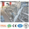 Good Price & Quality a Frame Pullet Chicks Cage Equipment