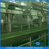 Ce Sheep Muslim Abattoir Machine in Slaughterhouse