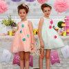 Appliqued Flower Girl Dress, Children Apparel, Kids Clothes