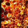 Hot Slae Red Agate Gemstone Slabs Design