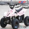 Mini ATV Quad for Kids (LZ110-2)