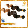 Xuchang Top Quality Hair New Arrival Hair Texture T Tone Color Body Wave (TFH-NL56)