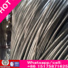 Rich Bwg33-0.20mm Hot Dipped Galvanized Wire for Cable Made in China