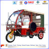 3 Wheeler Electric Tricycle