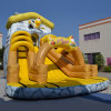 Inflatable Yellow Duck Funy Slide (aq01498)