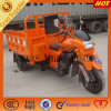 150cc Simple Shed Cargo Pioneer Tricycle for Sale
