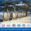 Automatic 50, 000cbm-300, 000cbm/Year Autoclave AAC Block Making Machine Line